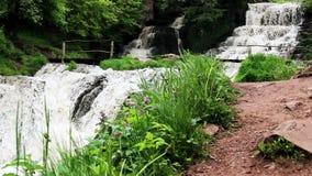 Stor vattenfall i skog lager videofilmer