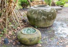 Stor vattenkrus Royaltyfri Fotografi