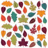 Stor vektoruppsättning av abstrakta Autumn Leaves stock illustrationer