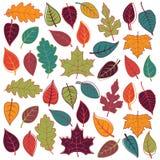 Stor vektoruppsättning av abstrakta Autumn Leaves stock illustrationer