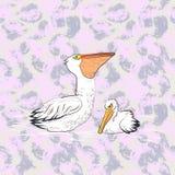 Stor vit australisk pelikan stock illustrationer