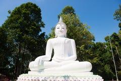 Stor vit buddha staty på kullen Royaltyfri Fotografi