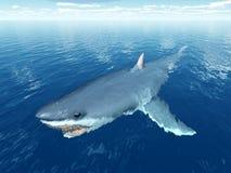 Stor vit haj vektor illustrationer