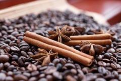 Stora aromatiska kaffebönor, aniskrydda för sötsaker, kakor, kanelbruna pinnar och kryddnejlikor Olika sorter av kryddor fotografering för bildbyråer