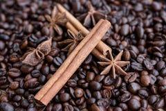 Stora aromatiska kaffebönor, aniskrydda för sötsaker, kakor, kanelbruna pinnar och kryddnejlikor Olika sorter av kryddor royaltyfri bild
