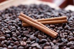 Stora aromatiska kaffebönor, aniskrydda för sötsaker, kakor, kanelbruna pinnar och kryddnejlikor Olika sorter av kryddor royaltyfri fotografi