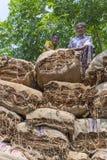 Stora belopp av torra tobak som förutom laddar i en bärande lastbil i Dhaka, manikganj, Bangladesh Royaltyfri Fotografi