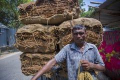 Stora belopp av torra tobak som förutom laddar i en bärande lastbil i Dhaka, manikganj, Bangladesh Royaltyfria Bilder
