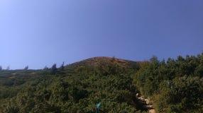 stora berg Royaltyfri Fotografi