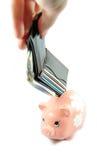 stora besparingar Fotografering för Bildbyråer