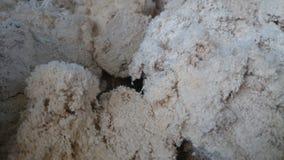 Stora bitar av krossad kalksten fotografering för bildbyråer