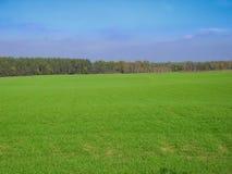 8 stora blåa oklarheter avlägsen lätt eps för tillägg fields byn för fem för förgrundsformatgreen för liggande för ängar för plan Royaltyfri Bild