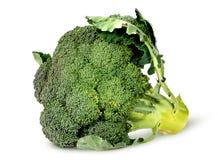 Stora broccoliflorets med roterande sidor Royaltyfri Bild