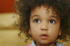 stora bruna ögon Royaltyfri Foto