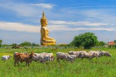 stora buddha thailand Fotografering för Bildbyråer