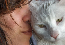 Stora Cat Love Exoression Royaltyfria Foton