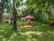Stora champinjoner bredvid träd ett litet dvärg- hus och växter royaltyfri foto