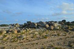 Stora dråsade stenar på Aruban den norr kusten Royaltyfri Fotografi