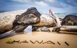 Stora drivvedstubbar på den Kuaui stranden med Hawaii stavade ut med små drivvedpinnar royaltyfri fotografi