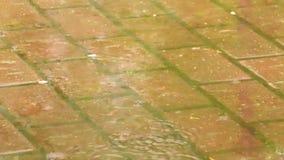 Stora droppar av regn på bakgrund av vägtegelplattorna lager videofilmer