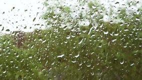 Stora droppar av regnflöde ner fönstret förser med rutor lager videofilmer