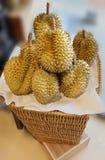 Stora durians Arkivfoto
