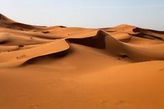 Stora dyn i Sahara deformerad av vinden, Marocko Royaltyfri Fotografi