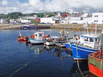 Stora fisketr?lare p? den Killybegs hamnen Co Donegal Irland royaltyfri foto