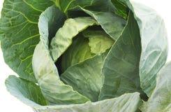 stora grönsaker för kålgreenhuvud Royaltyfria Foton