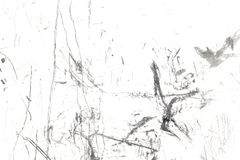 Stora grungetexturer och bakgrunder Arkivfoto