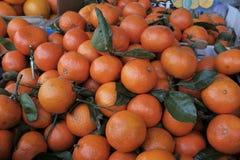 Stora härliga mogna tangerin Royaltyfria Bilder