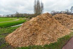 Stora högar av wood chiper, når att ha beskurit av träd och buskar arkivfoton