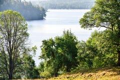 Free Stora Hålsjön In Sweden Marks Kommun Walking Around Stock Images - 122003014
