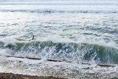 Stora havsvågor som bryter på den konkreta pir i blåsväder royaltyfri foto