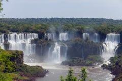 Stora Iguazu Falls Naturlig under av världen Royaltyfri Foto