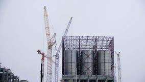 Stora industriella behållare för bensin och olja Stora behållare i den kemiska fabriken Stora behållare för att lagra bränsle är  Royaltyfri Fotografi