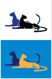 stora katter Royaltyfria Foton