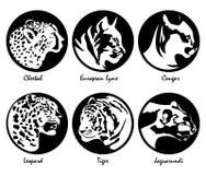 Stora katter - logoer, symboler i svarta cirklar, illustrationsamling royaltyfri illustrationer