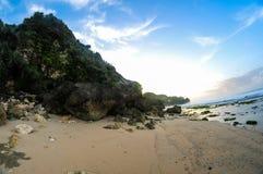 Stora korallsikter Arkivfoto