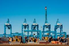Stora kranar på behållareterminalen i den Rotterdam hamnen Royaltyfri Bild