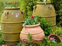 Stora krukor som innehåller blommor Fotografering för Bildbyråer