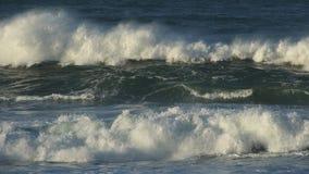 Stora kust- vågor stock video