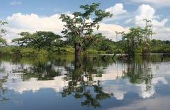stora laguna arkivfoton