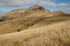 stora liggandebergberg Östliga Carpathians, Rumänien Fotografering för Bildbyråer