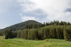 stora liggandebergberg Arkivfoto