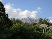 stora liggandebergberg Royaltyfria Foton