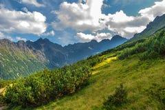 stora liggandebergberg höga poland tatras Arkivfoto