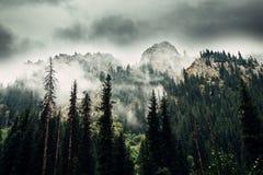 stora liggandebergberg Tien Shan Dalen av floden lämnade Talgar kazakhstan royaltyfri fotografi