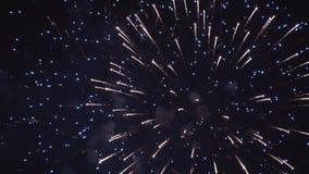 Stora ljusa fyrverkerier på fjärdedel av juli stock video