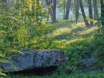 Stora massiva kamouflerade stenblock mot bakgrunden av grunda gröna buskar och högväxta lövfällande träd Arkivbild
